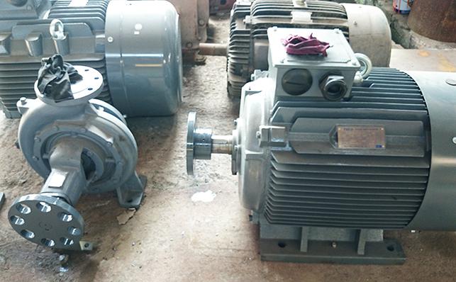Động cơ điện Guanglu
