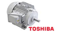 Động cơ điện Toshiba